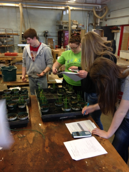 Salinity and Germination Data Collection
